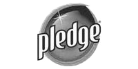 Pledge