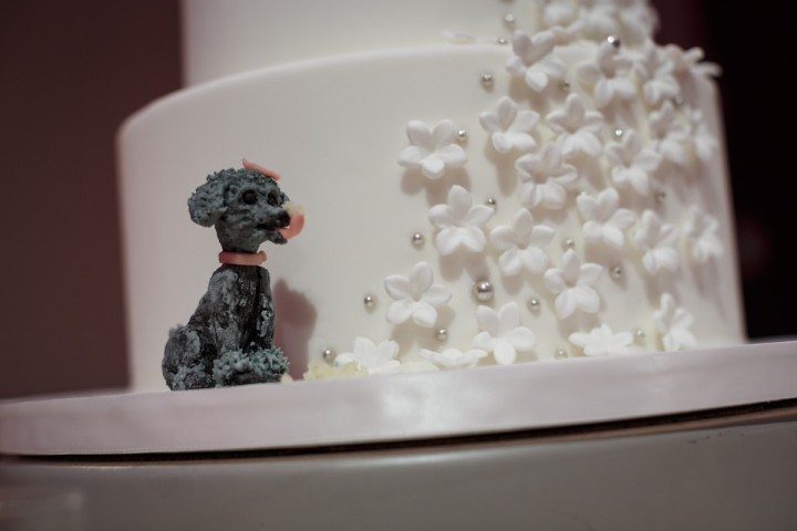 Elysia Root cakes Chicago lgbt wedding photographer captures new years eve reception at the Park Hyatt dog poodle on cake