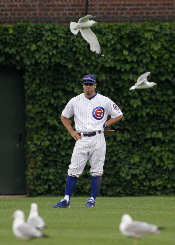 Chicago Sports Photographer John Gress Professional Baseball
