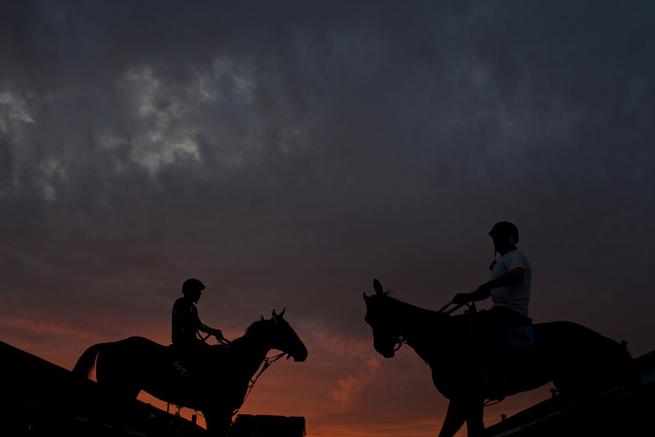 Race horses cross paths during early morning workouts at Churchill Downs in Louisville, Kentucky, May 3, 2013. REUTERS/John Gress